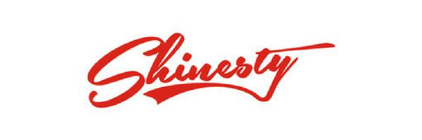 Shinesty testimonial