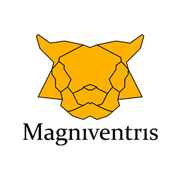 Magniventris - Black Friday eCommerce Tips